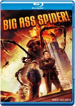Big Ass Spider 2013 m720p BluRay x264-BiRD