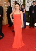 Julia Louis-Dreyfus - 71st Annual Golden Globe Awards 1/12/14