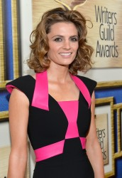 Stana Katic - 66th Annual Writers Guild East Coast Ceremony in NYC 2/1/14