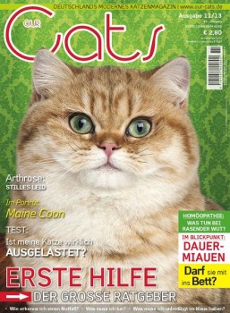 unusual facts about cats