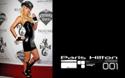 Paris Hilton : Hot Widescreen Wallpapers x 20 (2 of 3)