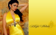 Haifa Wehbe : Hot Widescreen Wallpapers x 4