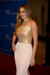 Sofia Vergara - 100th Annual White House Correspondents' Association Dinner in Washington,DC 5/3/14