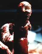 Чужой / Alien (Сигурни Уивер, 1979)  C801fa330369895