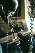 Чужой / Alien (Сигурни Уивер, 1979)  E9aa5d330369881
