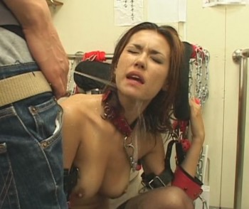 Maria ozawa piss torrent
