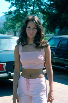 Cheryl Ladd Vs Jaclyn Smith: Who's Your Favorite ?