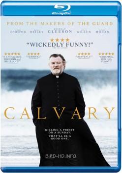 Calvary 2014 m720p BluRay x264-BiRD
