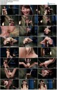 Marica Hase : Japanese Rope Slut - Kink/ SadisticRope (2014/ SiteRip)