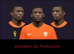 Download Georginio Wijnaldum PES 2014 Face by Professional