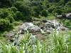 Hiking 2012 June 16 - 頁 2 1c0d40338538241