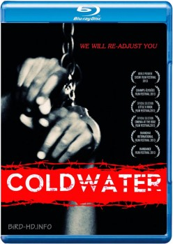 Coldwater 2013 m720p BluRay x264-BiRD