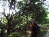 Hiking Tai Lam 4f8e89361487804