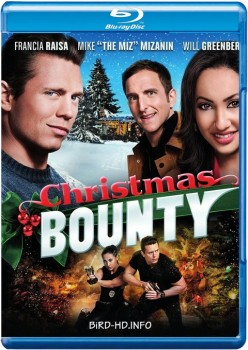 Christmas Bounty 2013 m720p BluRay x264-BiRD
