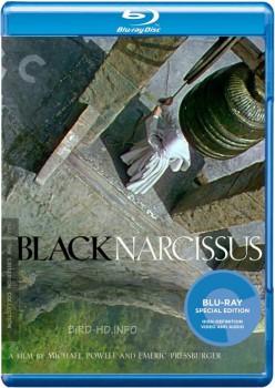 Black Narcissus 1947 m720p BluRay x264-BiRD