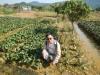 菜園村 圭角山  F1b256378451334