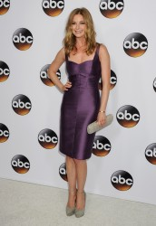 Emily VanCamp - Disney & ABC Television Group's TCA Winter Press Tour in Pasadena 01/14/15