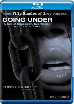 Going Under 2004 m720p BluRay x264-BiRD