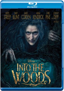 Into the Woods 2014 m720p BluRay x264-BiRD