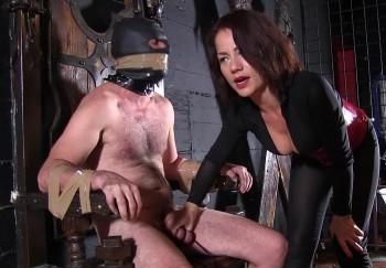 bbw and bbc porn