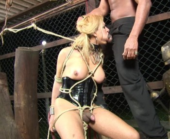 shemale cock torture